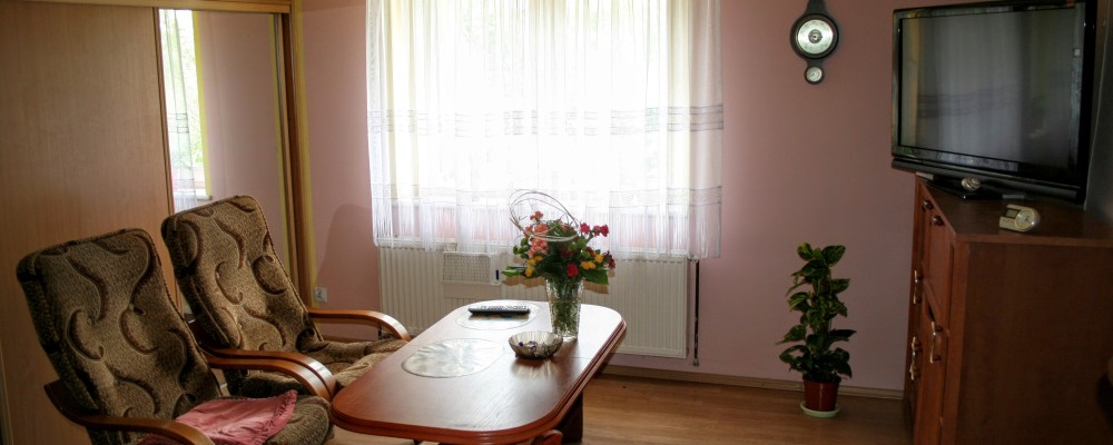 Pokój Dzienny - Apartament Noclegi